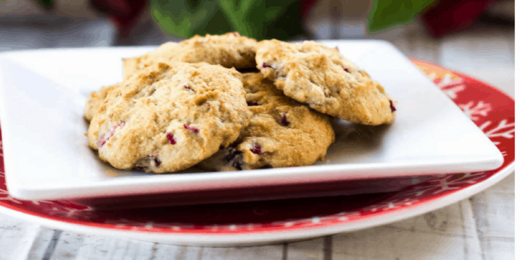 Sugar Free Cranberry Walnut Cookies